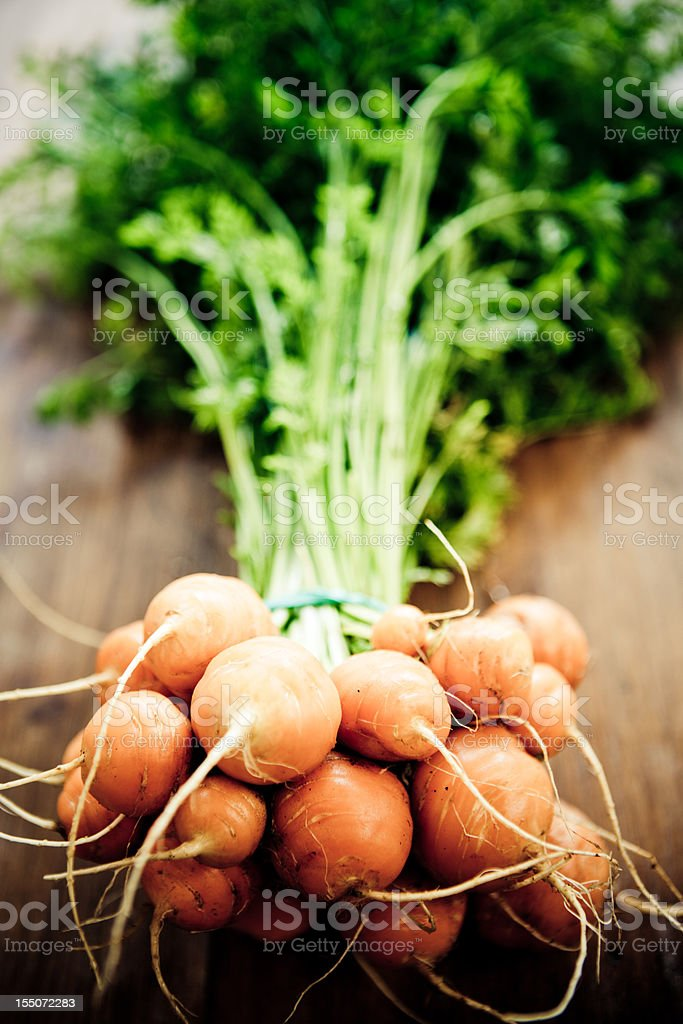Thumbelina Carrots stock photo