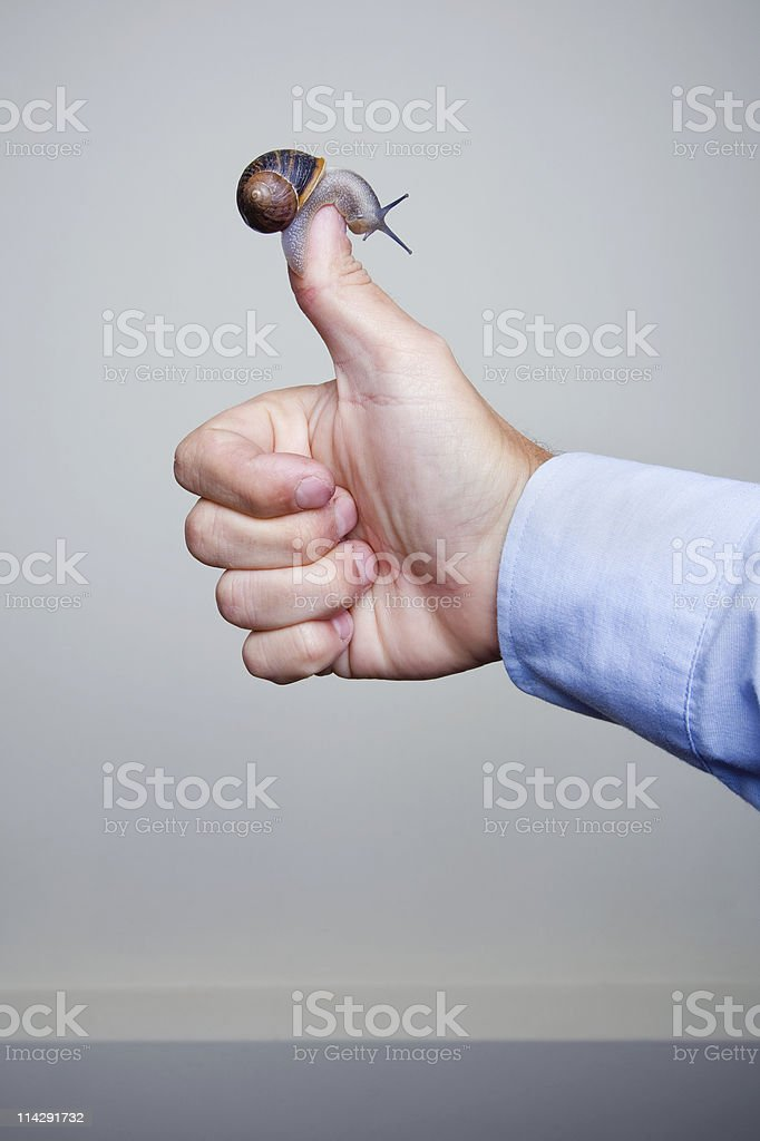 Thumbs Up With Snail royalty-free stock photo