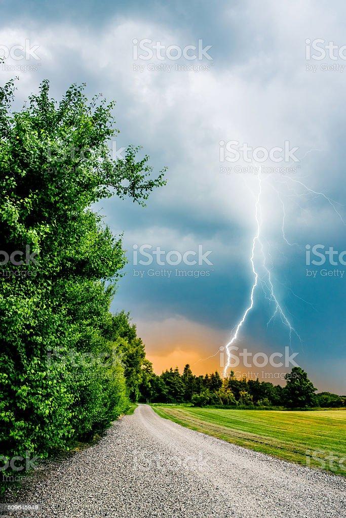 thunder and lightning hits trees stock photo