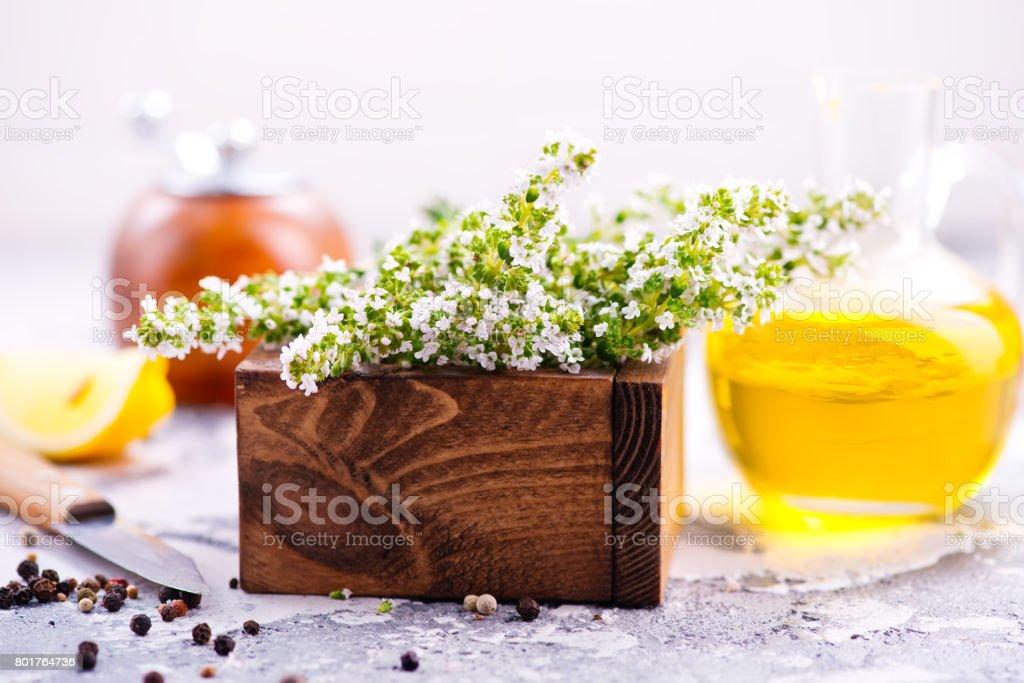 thyme stock photo