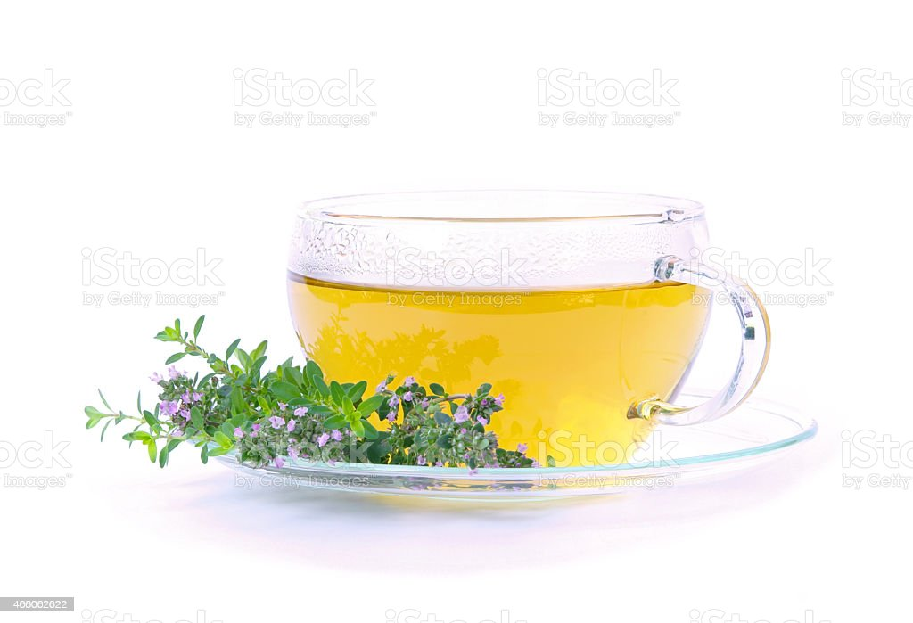Thymus tea in a transparent cup on a plate  stock photo