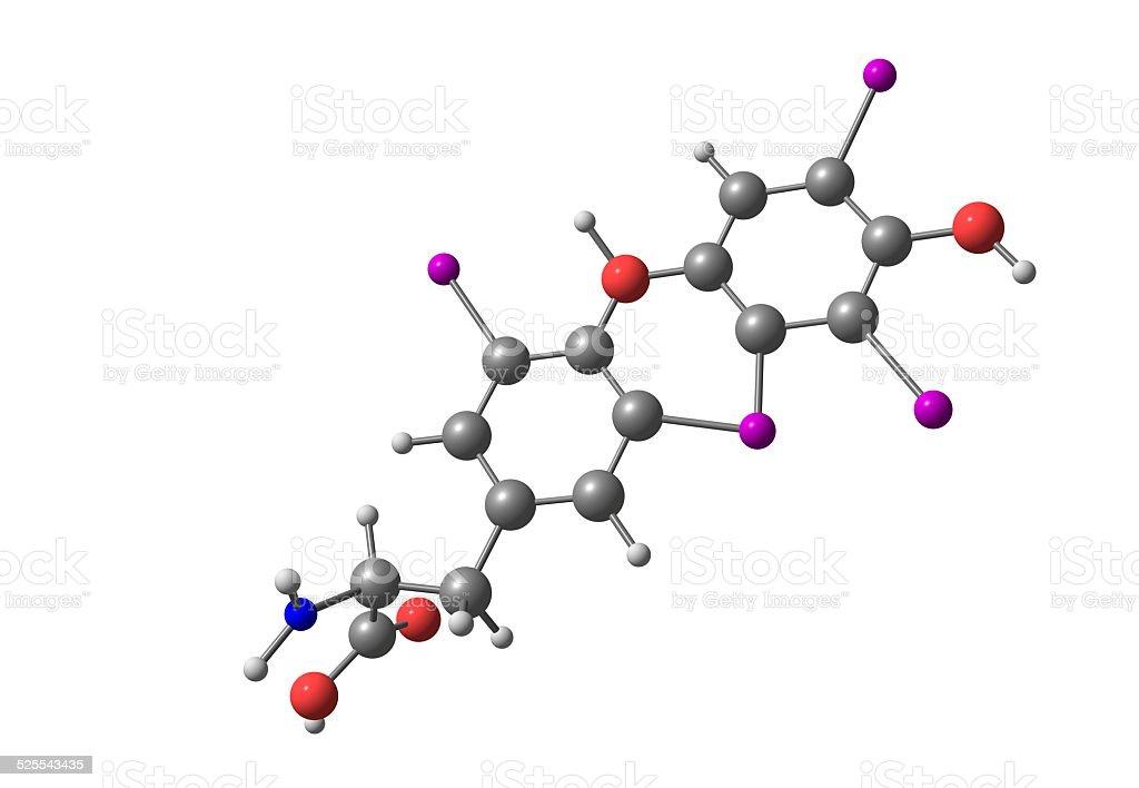 Thyroxine molecule isolated on white stock photo