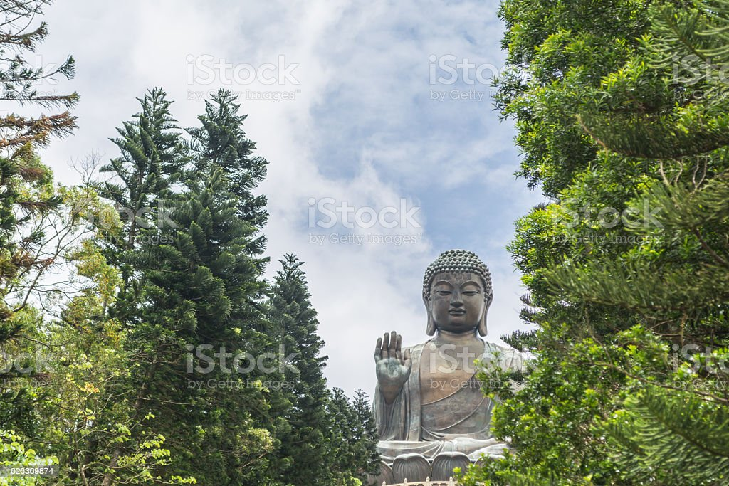 Tian Tan Buddha and trees as foreground stock photo