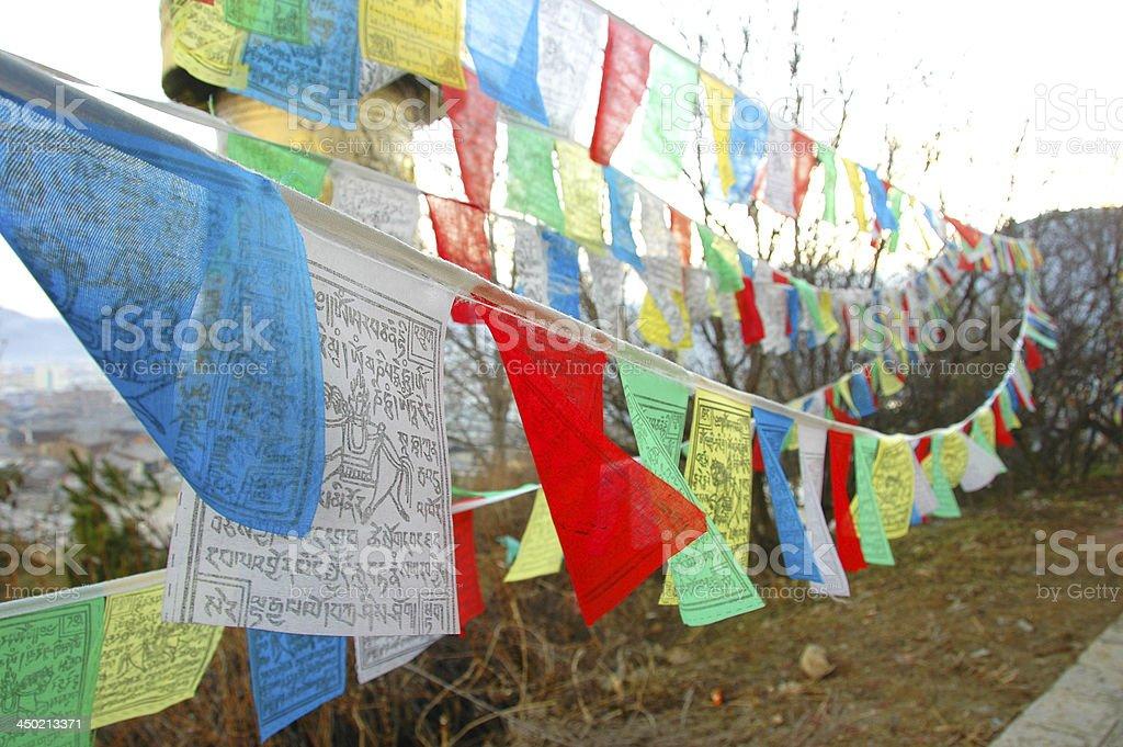 Tibetan Flag stock photo