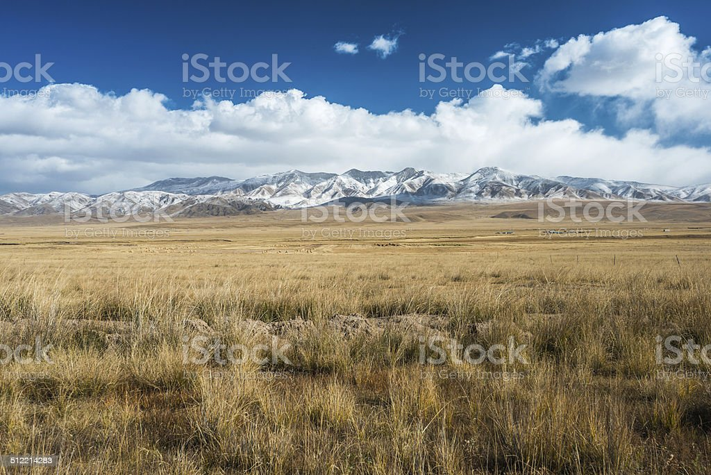 Tibetan highlands and distant snowy mountains near Daotanghe stock photo