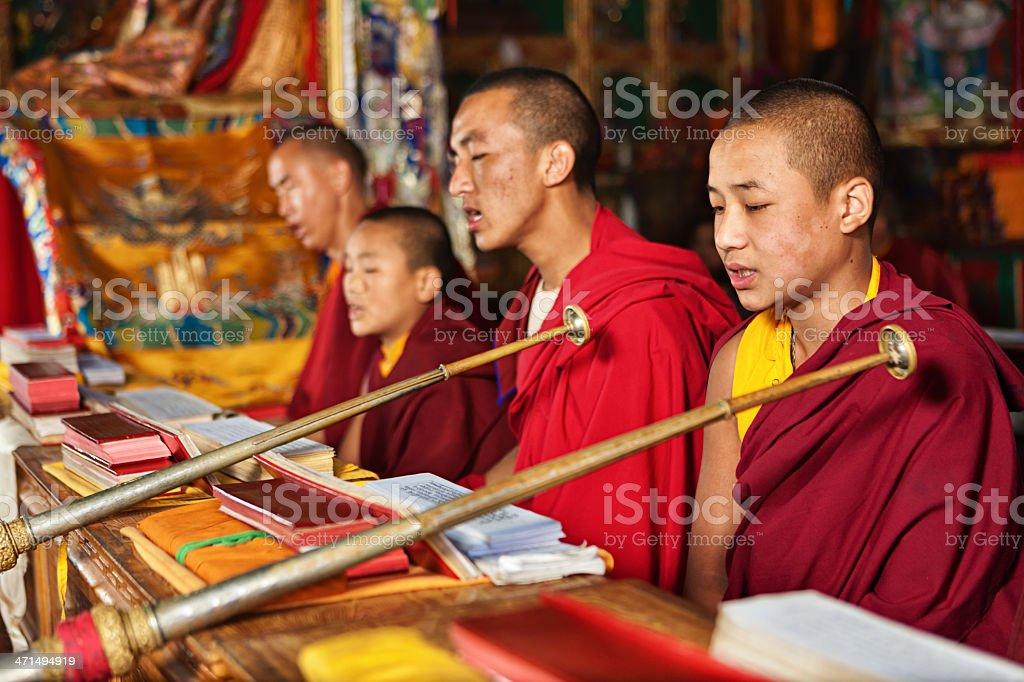 Tibetan monks praying during puja royalty-free stock photo