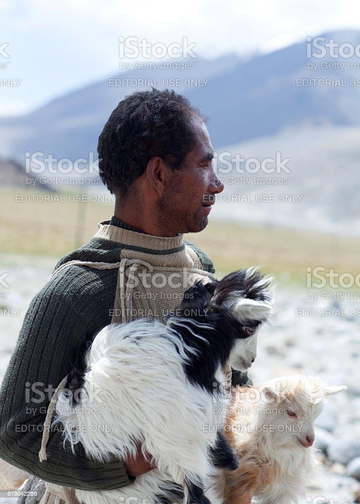 Tibetan nomad with goatling in Ladakh, India stock photo
