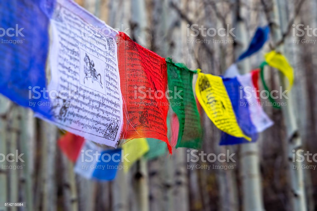 Tibetan Prayer Flags Outdoors stock photo
