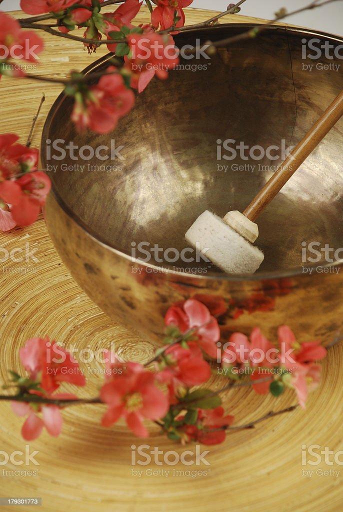 Tibetan singing bowl mallet in focus royalty-free stock photo