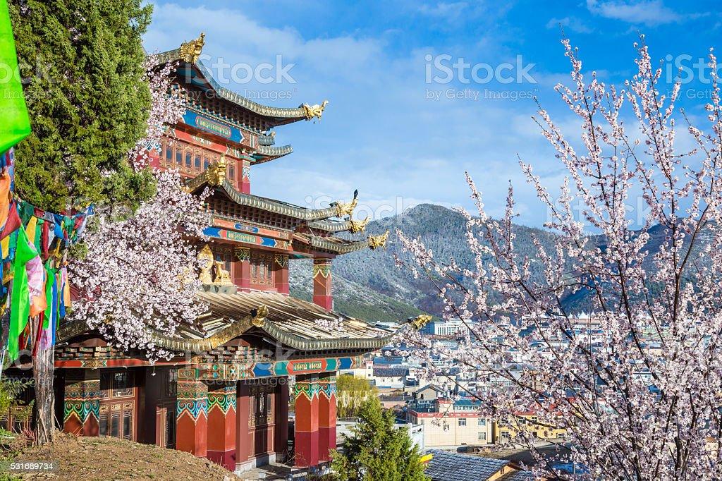 Tibetan Temple on the Hill in Yunnan, China stock photo