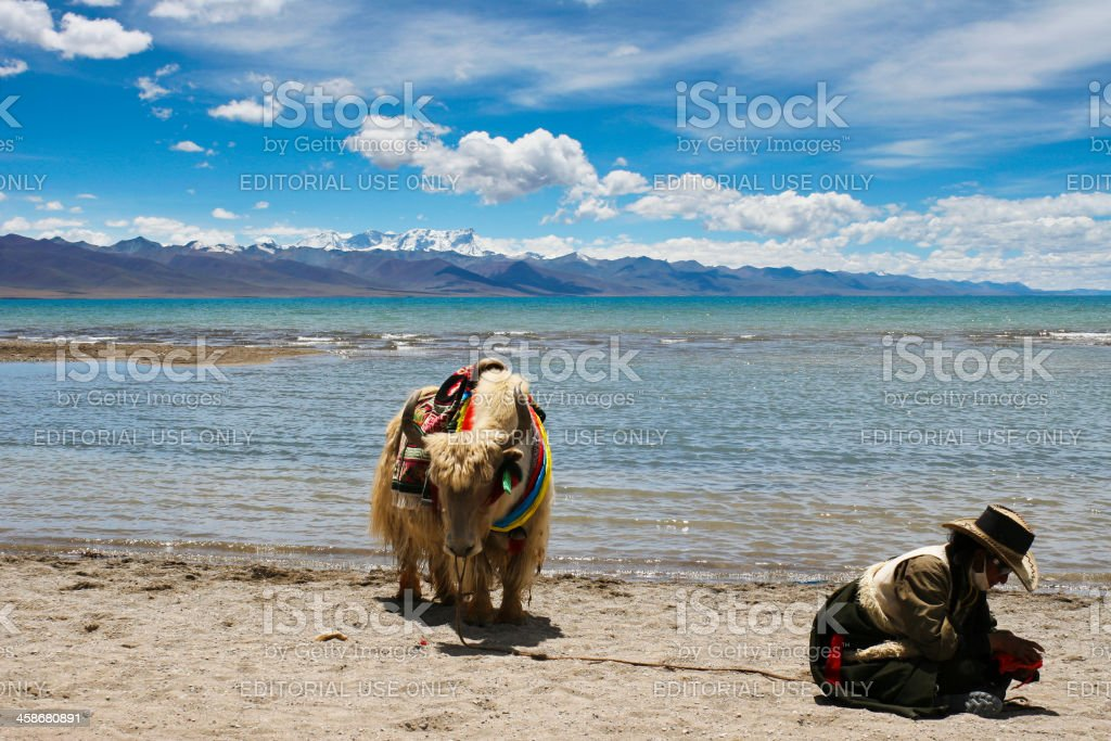 Tibetan Yak Herder by the Holy Lake stock photo