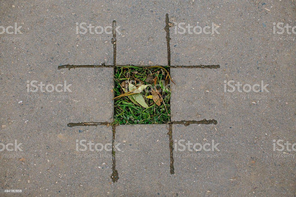 tic tac toe with nature stock photo