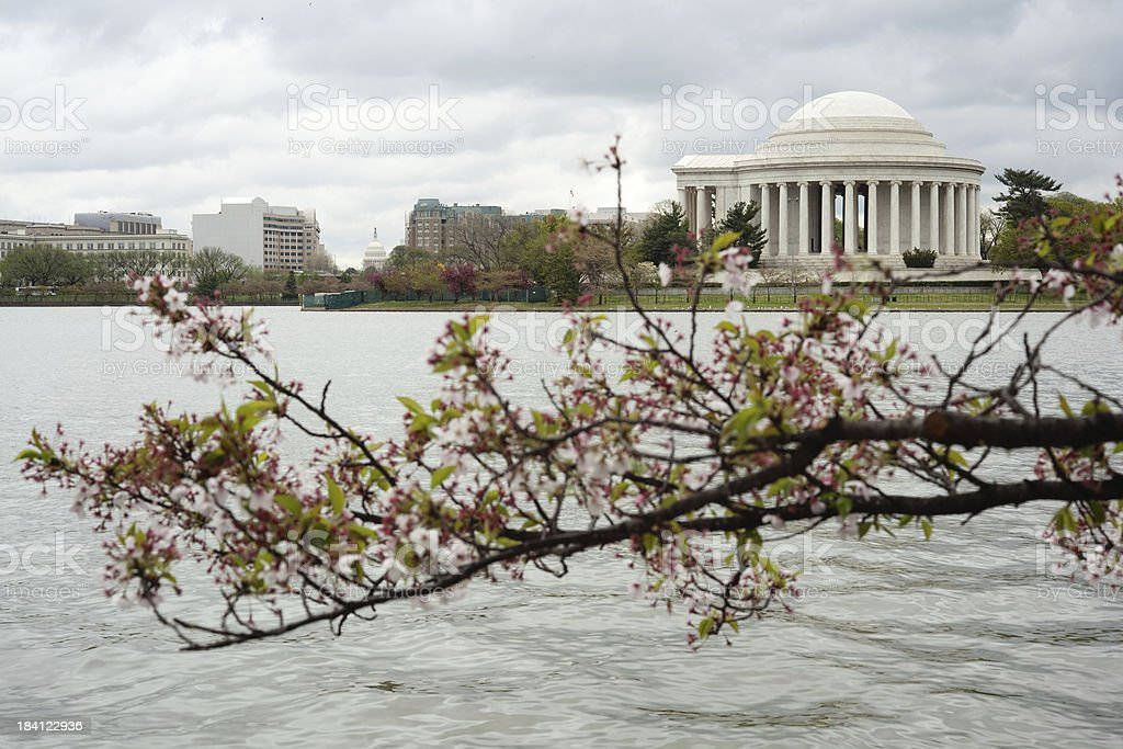 Tidal Basin with Jefferson Memorial and US capitol stock photo