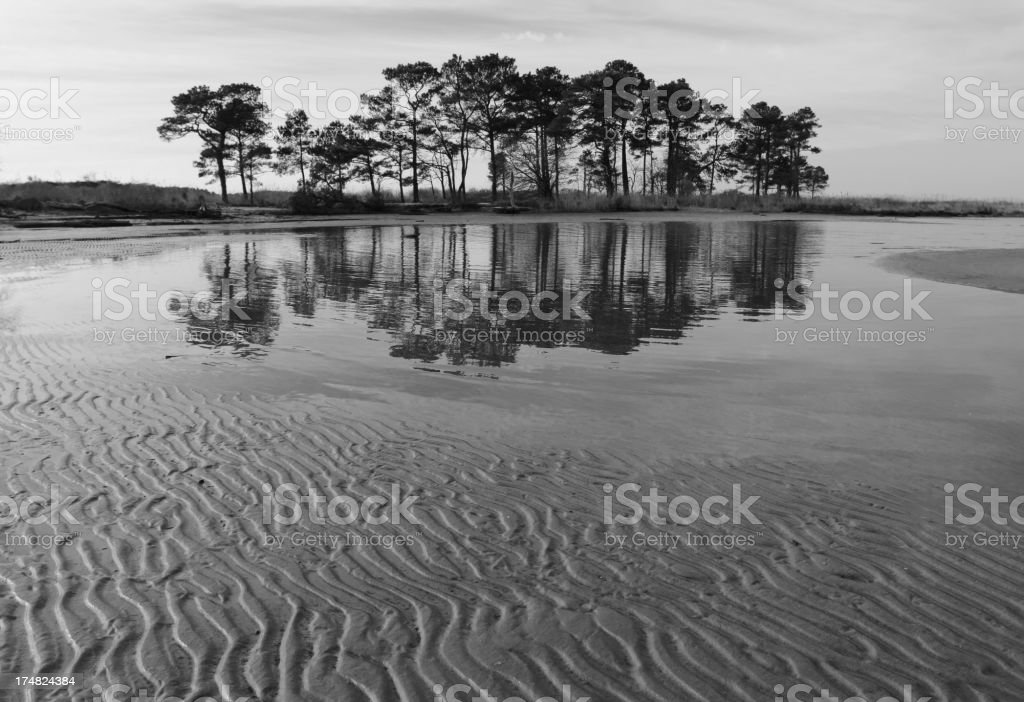 Tidal Flat on Chesapeake Bay stock photo