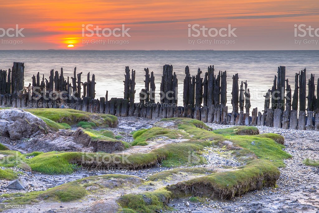 Tidal Salt Marsh Wadden sea stock photo