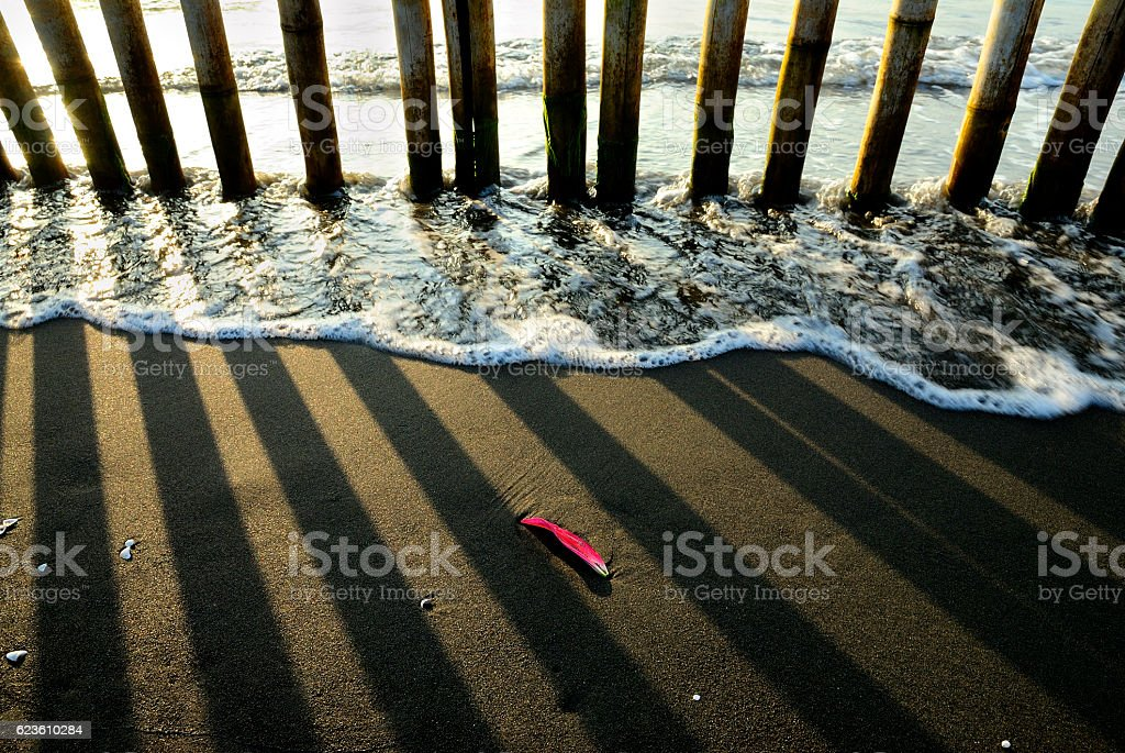 Tide and bamboo's shadow stock photo