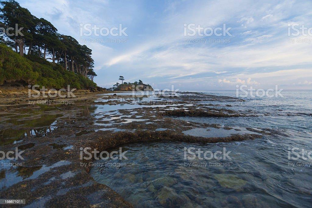 Tide Pools Coast Neil Island Andaman Landscape royalty-free stock photo
