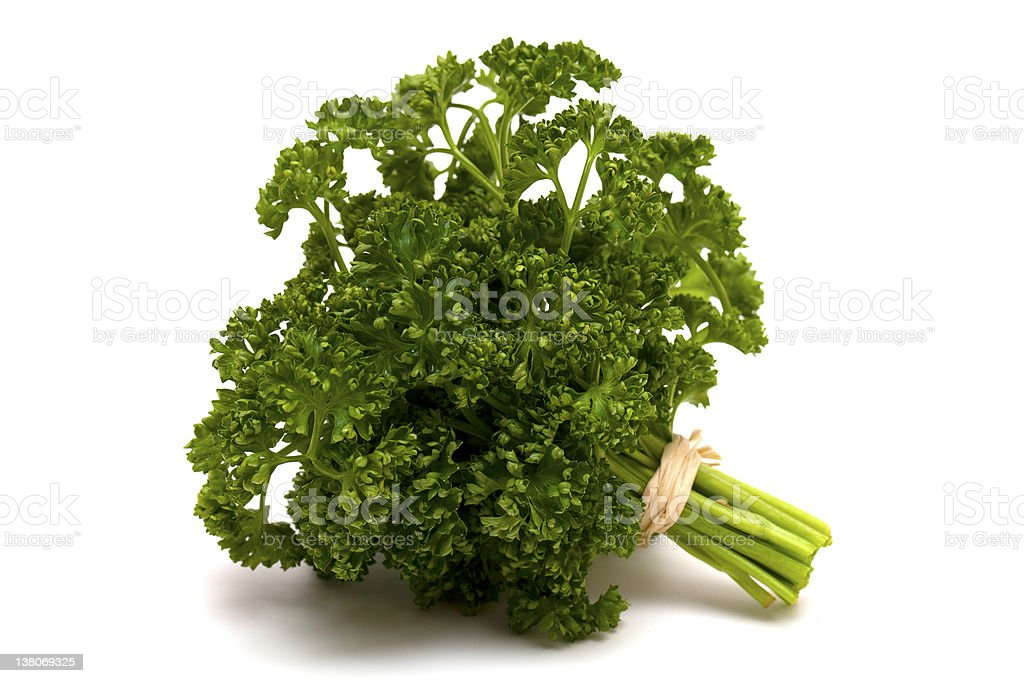 tied parsley royalty-free stock photo