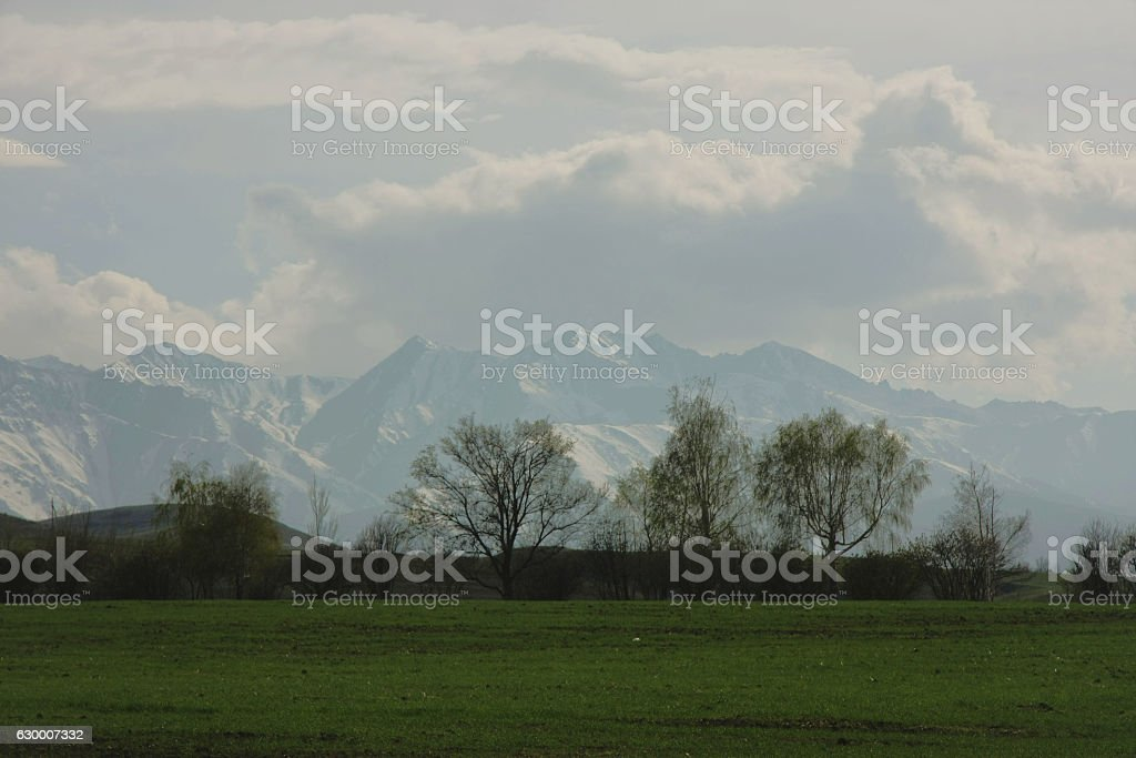 Tien Shan mountains in spring stock photo