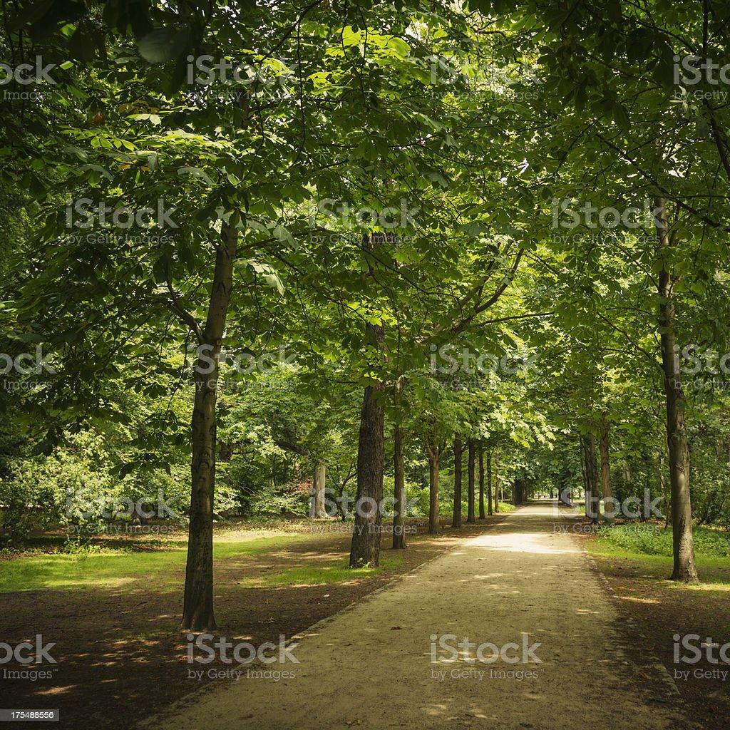 Tiergarten park in spring - Berlin royalty-free stock photo