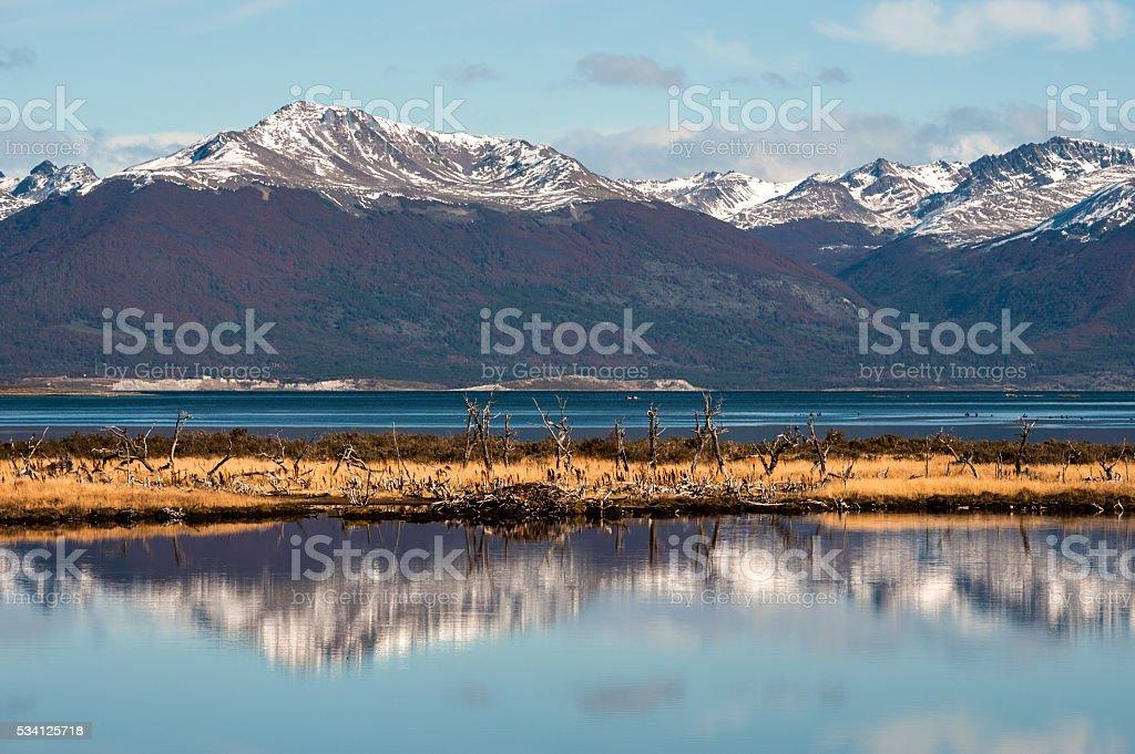Tierra del Fuego, Beagle Channel stock photo