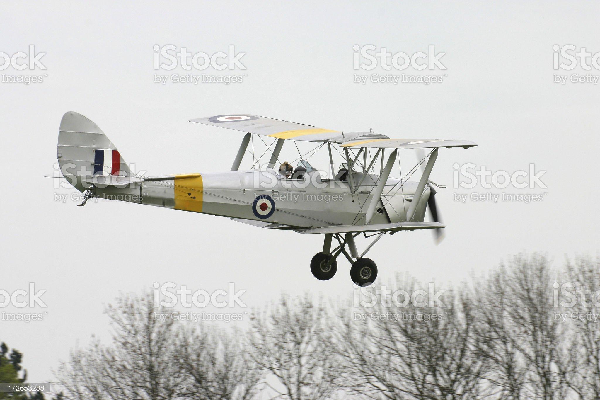 Tiger Moth royalty-free stock photo