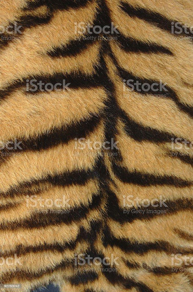 Tiger Skin royalty-free stock photo