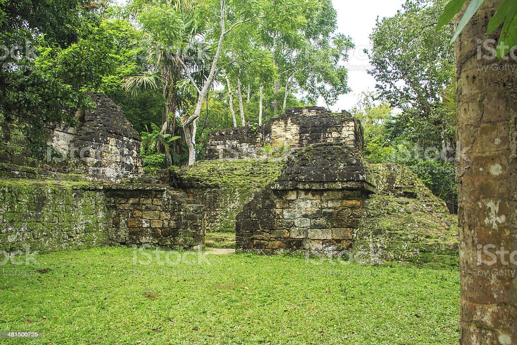 Tikal stock photo