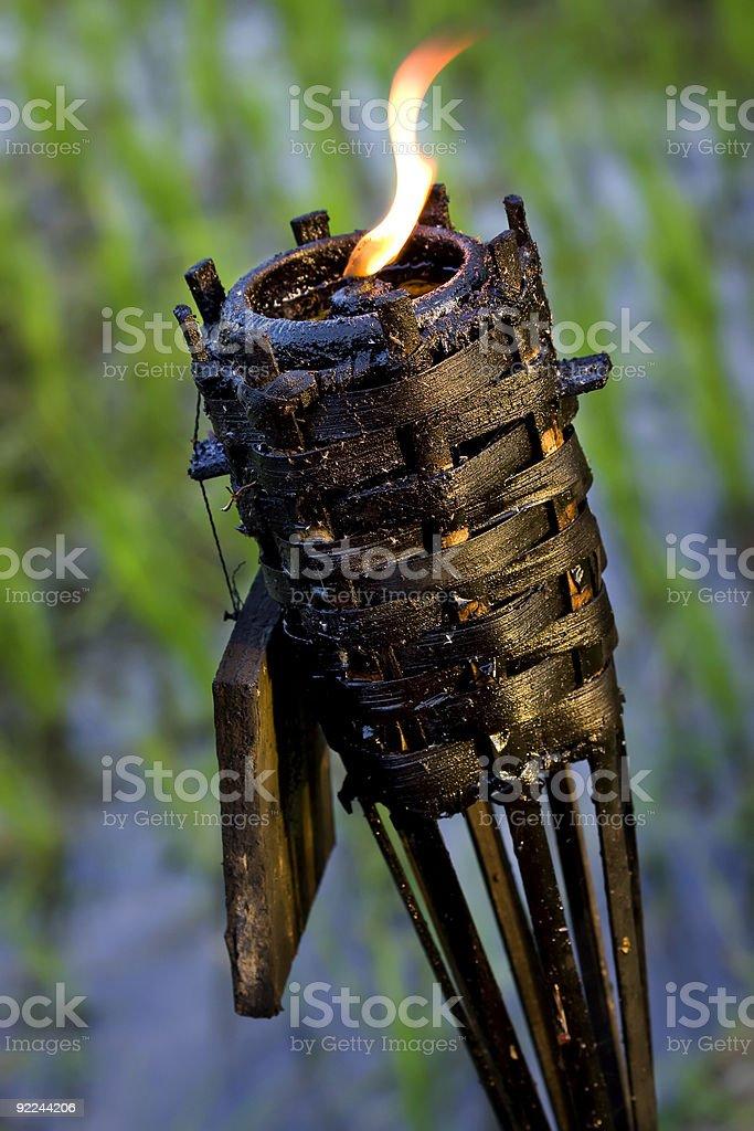 Torche Tiki au paddy field fond vert photo libre de droits