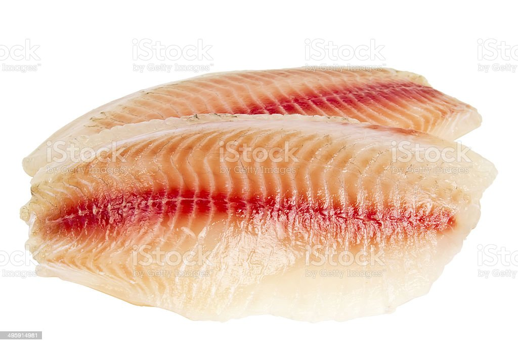 tilapia fillets isolated on white background stock photo