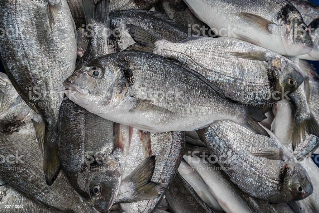 Tilapia fishes in a local market stock photo