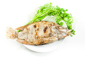 Tilapia grilled salt on white dish on white background