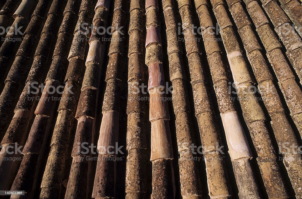 Tile on a roof stock photo