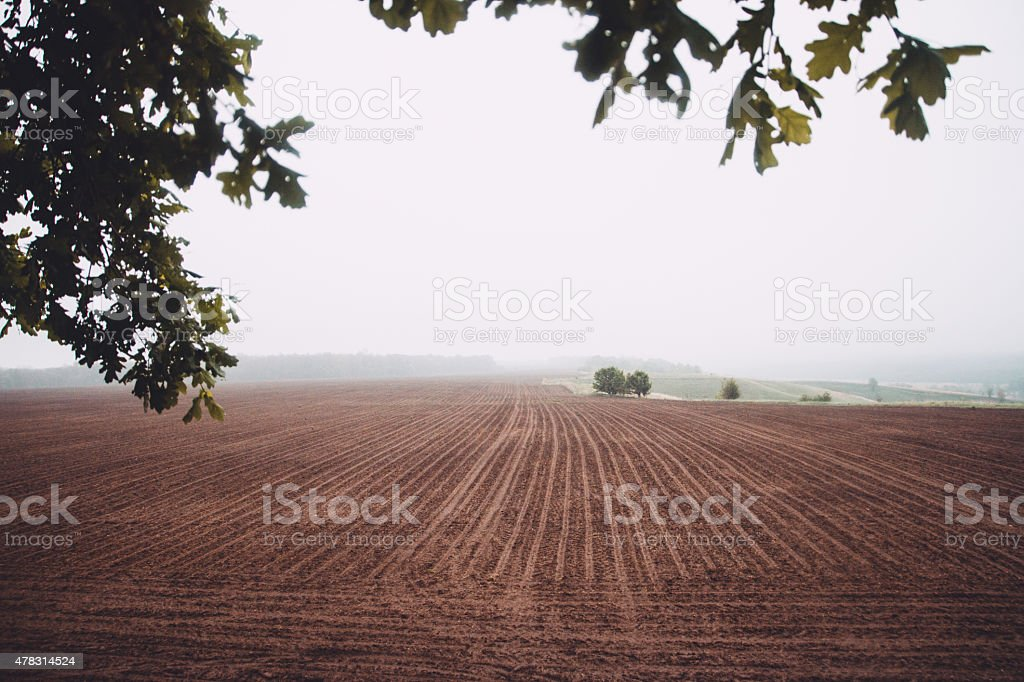 Tillage field in overcast weather stock photo