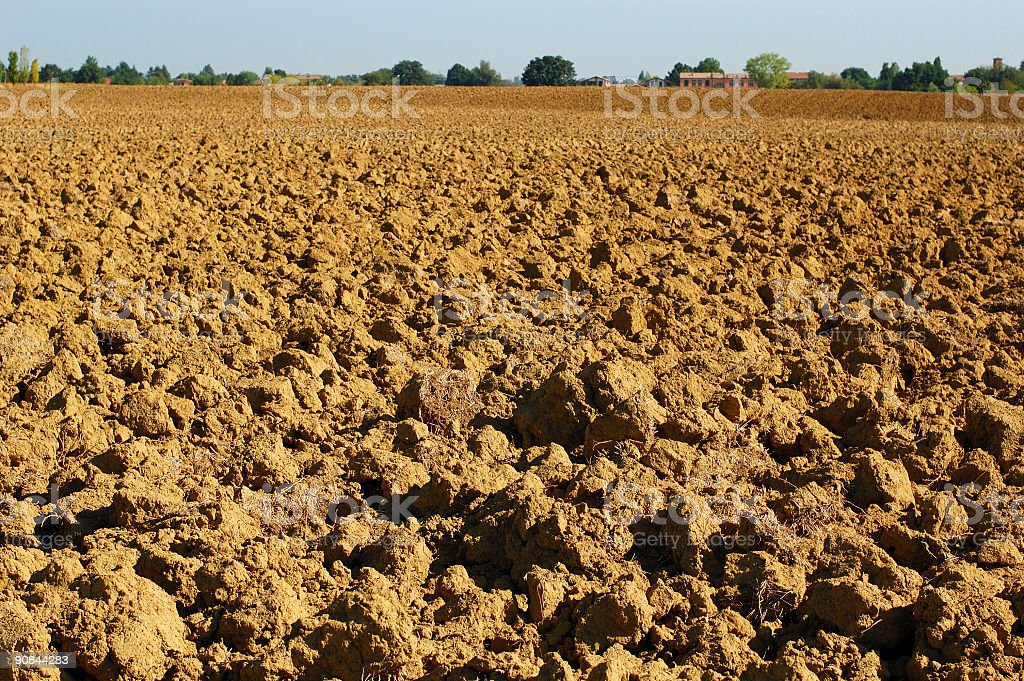 Tilled Field royalty-free stock photo