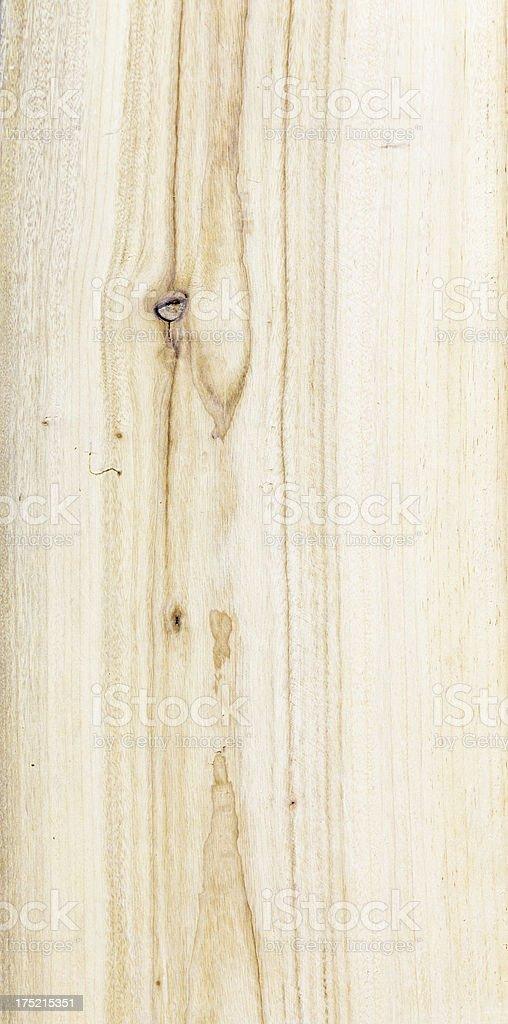 timber, camphor wood stock photo