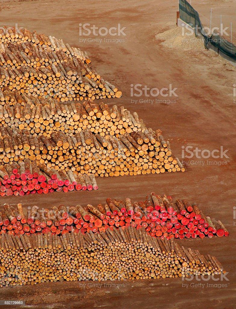 Timber for export, Gisborne port, New Zealand stock photo