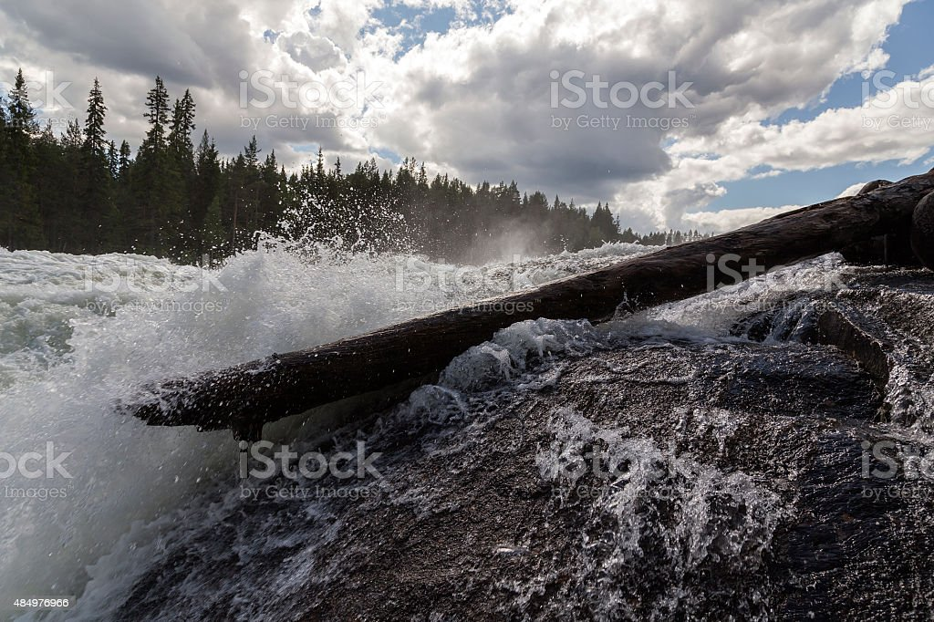 Timber in the river royalty-free stock photo