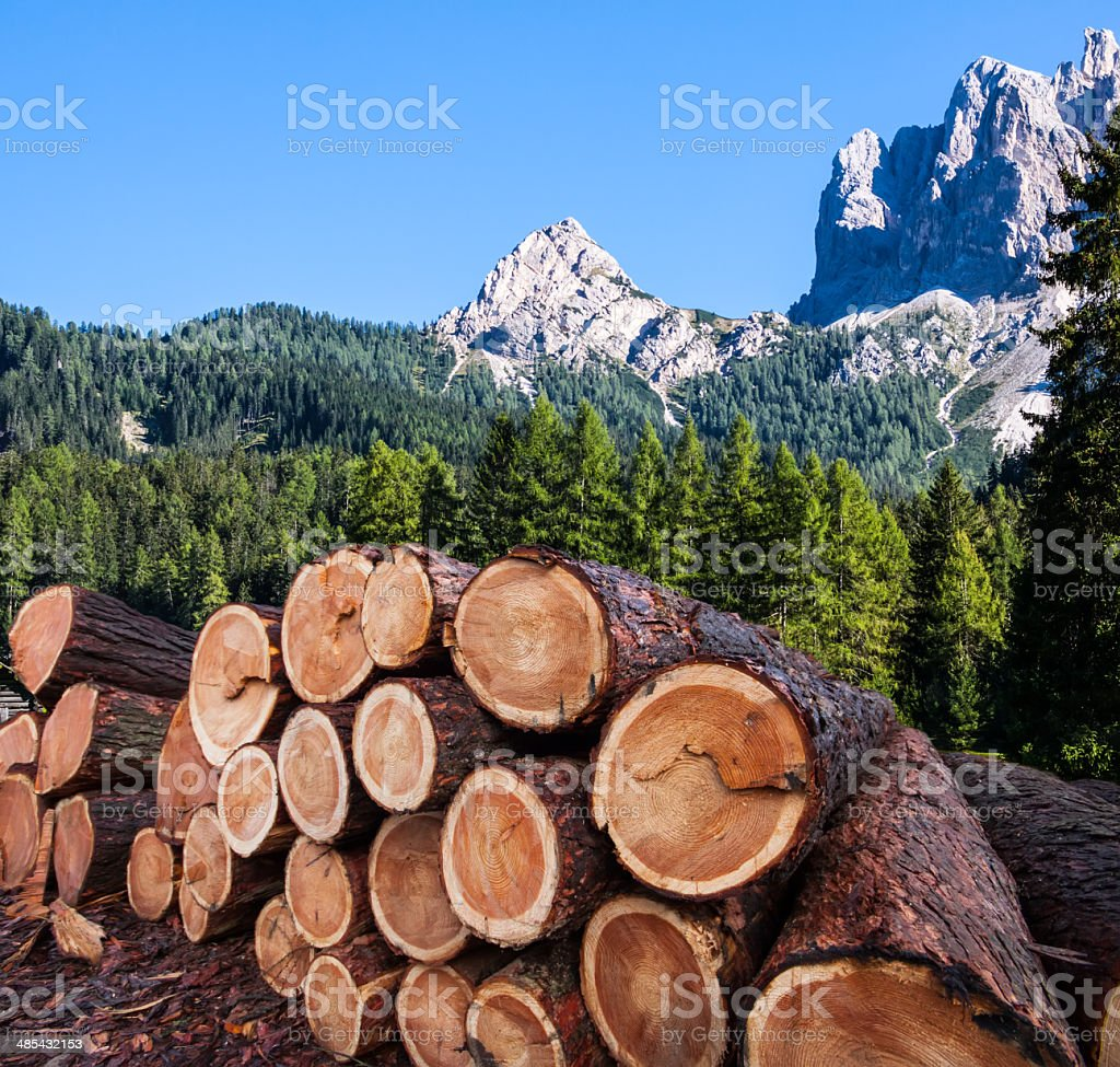 timber logging in Austrian Alps stock photo