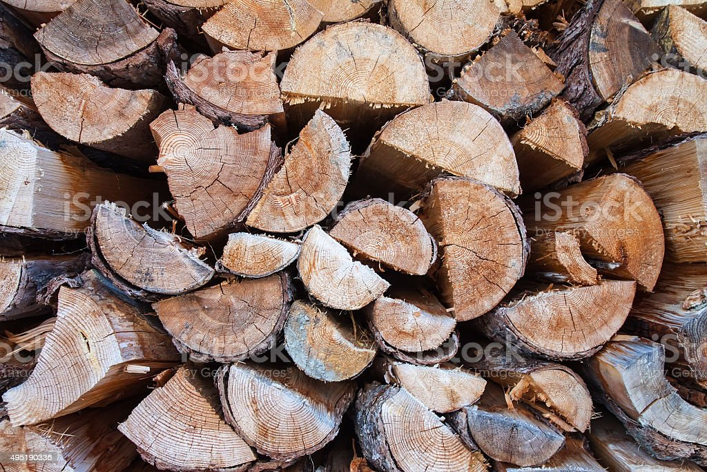 timber pattern of wood stock photo
