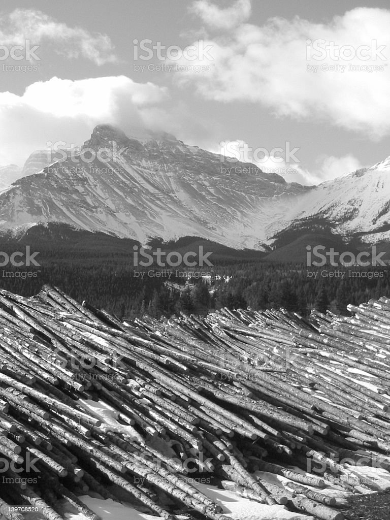 Timber royalty-free stock photo