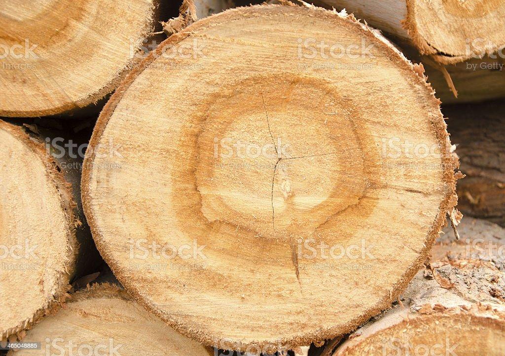 Timber stock photo