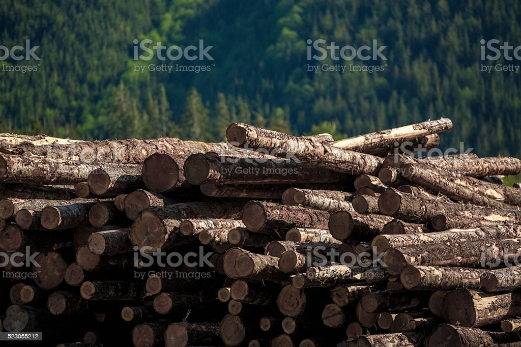 Timber Pile in front of Forested Hills stock photo