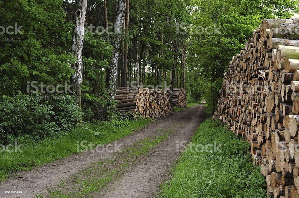 timber storage royalty-free stock photo