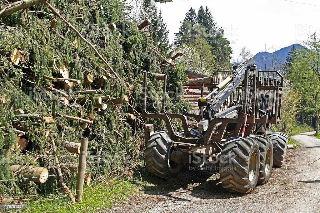Timber transport stock photo