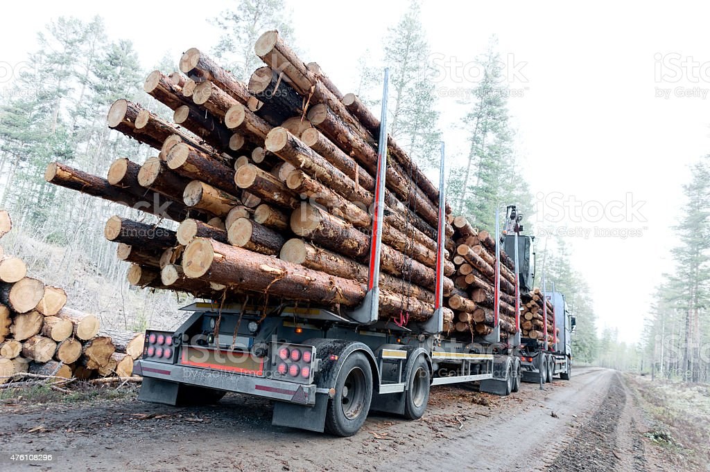 Timber truck on swedish dirt road stock photo