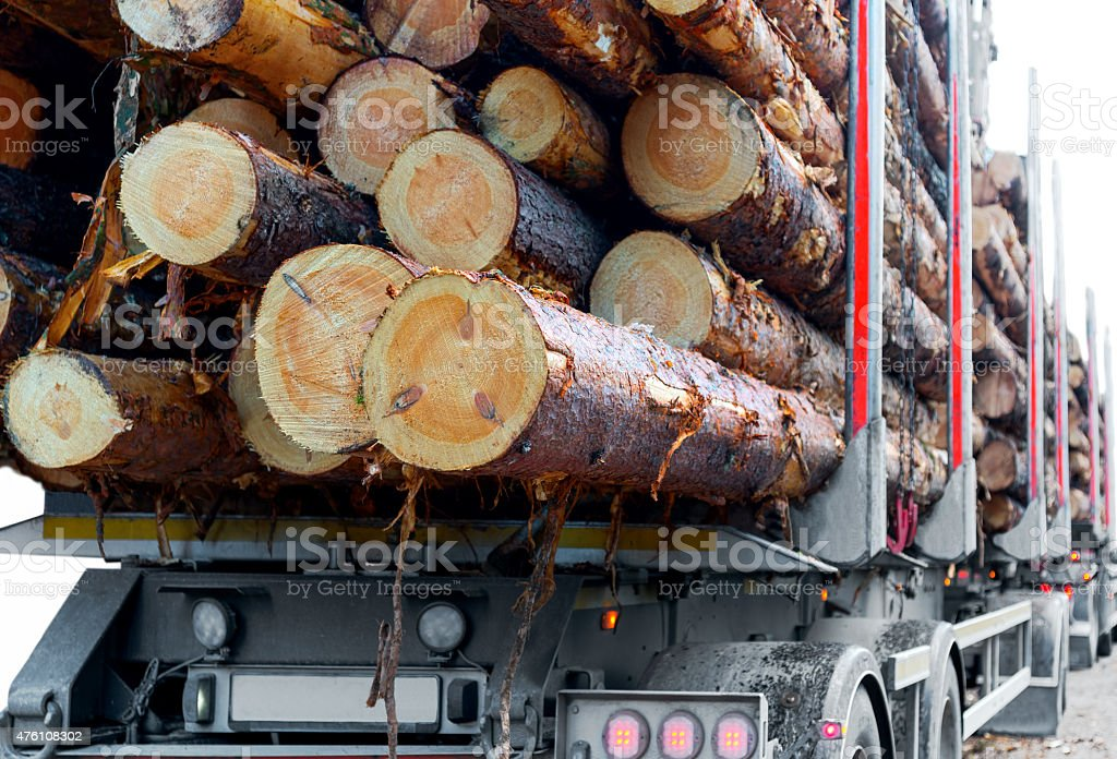 Timber truck stock photo