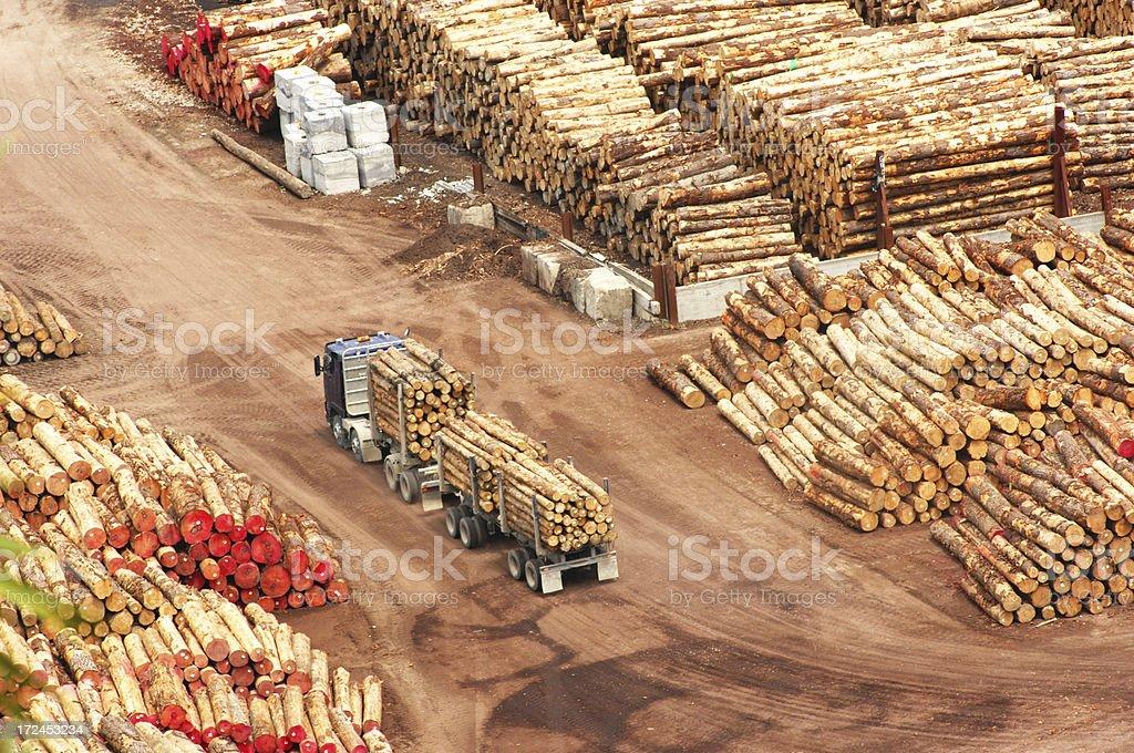 Timber Yard stock photo