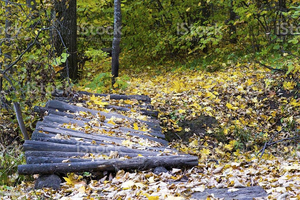 timbered bridge stock photo
