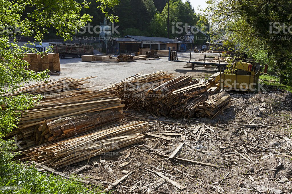timber-yard stock photo